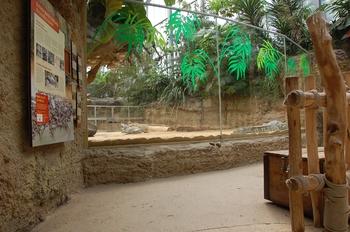 zoo cologne d50 2012 228