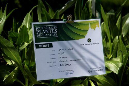 Les Journées des plantes de Chantilly - Printemps 2017
