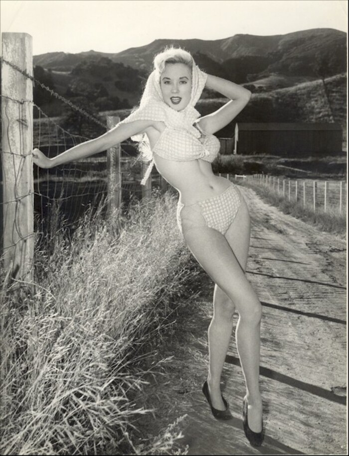 Betty Brosmer, la pin-up à la taille de guêpe