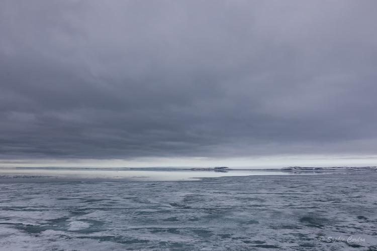 WPTJuin 2018- Wahlenbergfjorden
