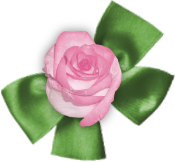 Kit St Valentin (10)