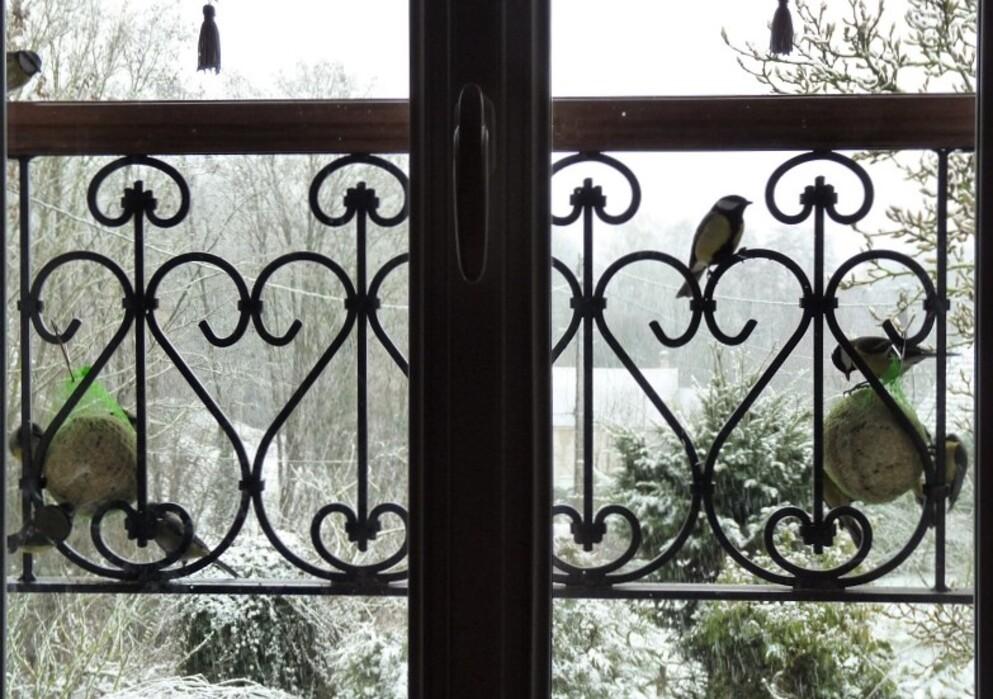 Ce matin, sur la fenêtre