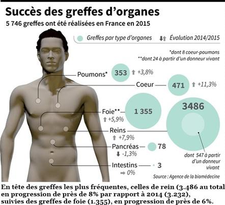 Les greffes d'organes en 2015