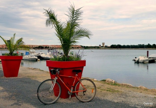 w04 - Pot & vélo