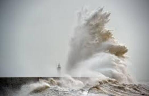 """Le coucou du vendredi, haïku, senryû, thème: """"tempête""""..."""