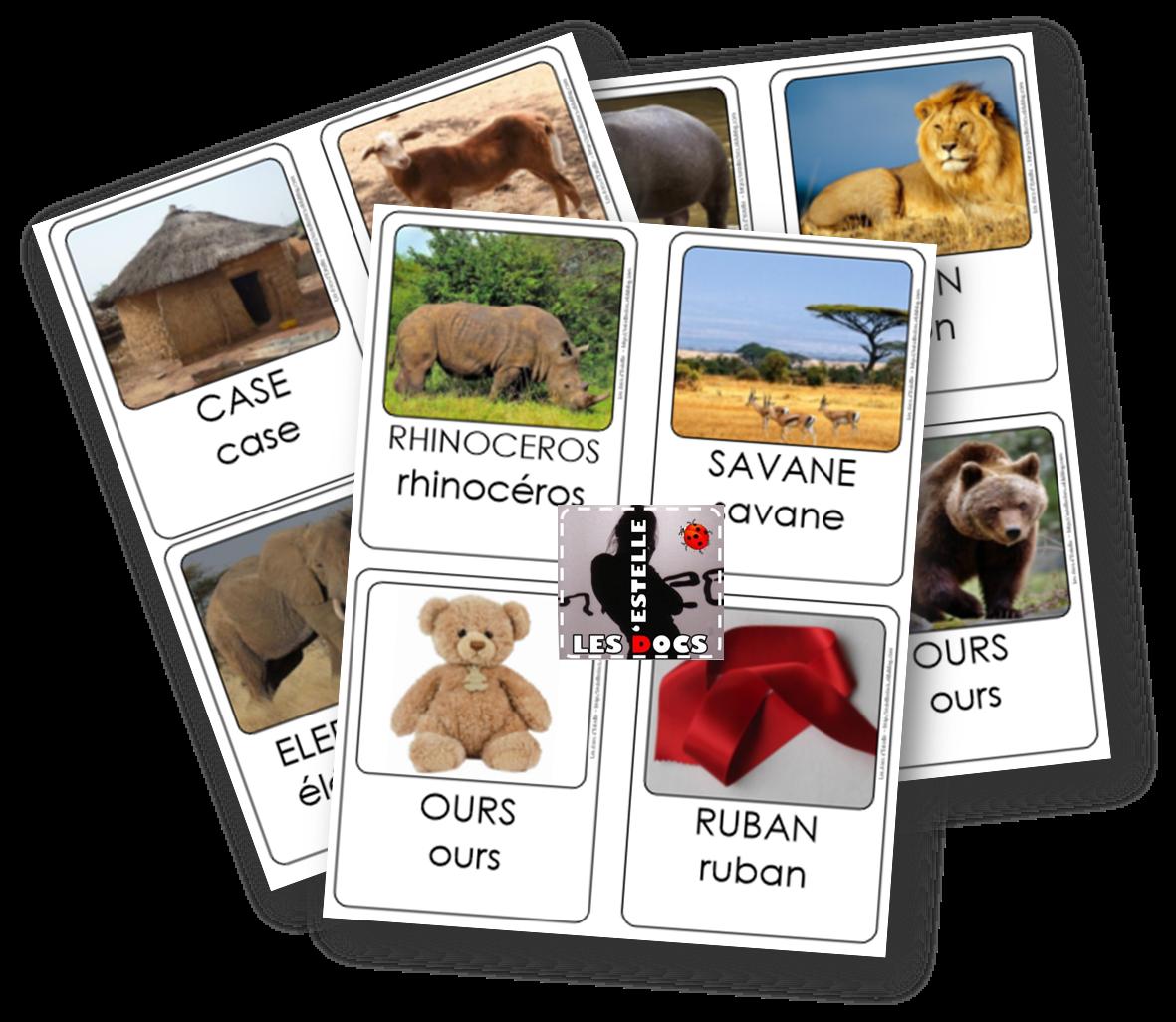 Y a-t-il des ours en Afrique ? Cartes de nomenclature - Les docs d'Estelle