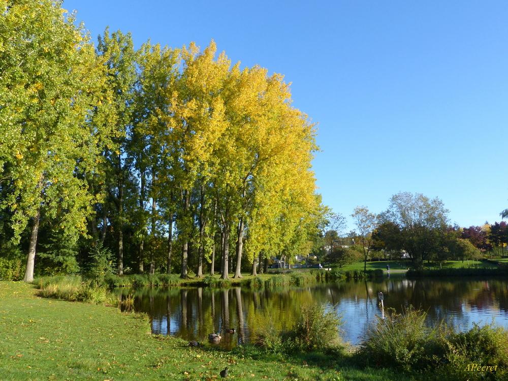 Lentement le Parc St-Pierre se colore