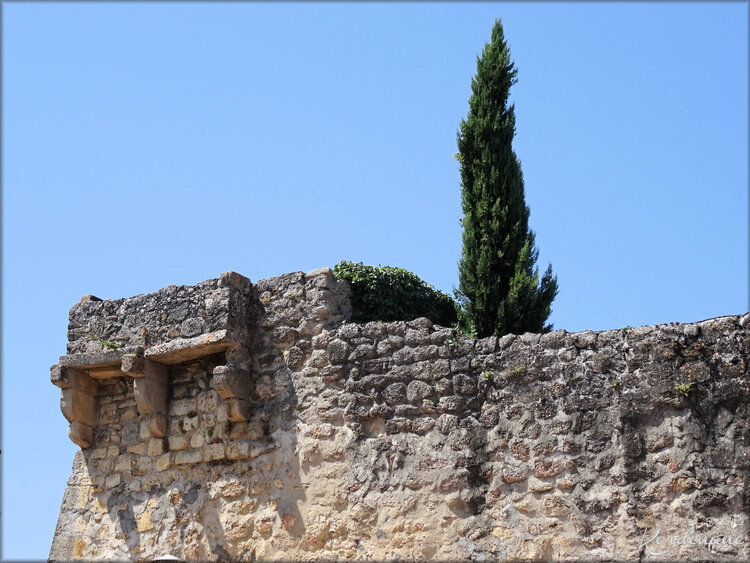 Photo de paysages - cité médiévale - Gironde
