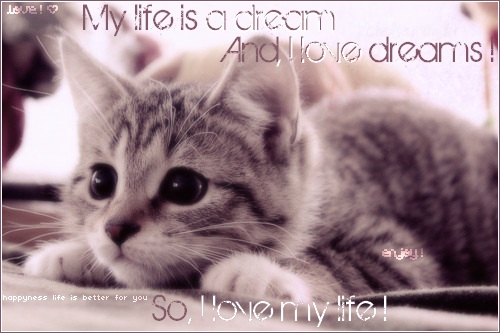 My life is a dream *^*