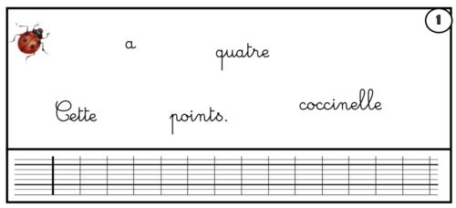 Des ateliers sur la phrase - CE1