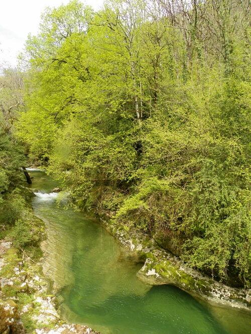 Rencontre de printemps dans le Bugey ( 2 )
