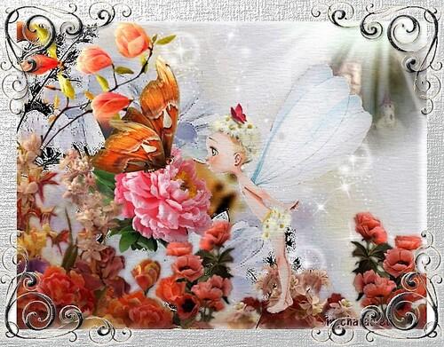 2018-cartes pour Papillon de nuit et son combat contre le crabe