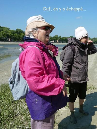 La grande aventure de la Baie de Somme