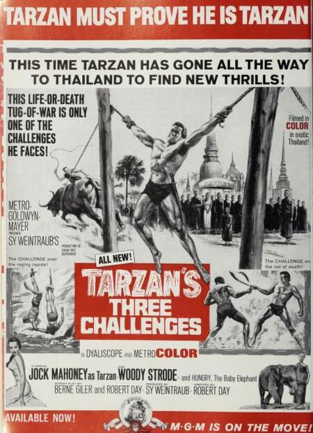 TARZAN THREE CHALLENGES