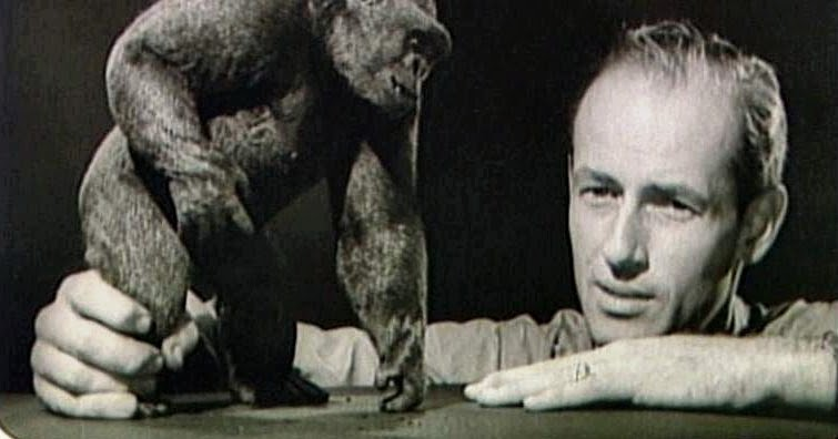 Classic Film and TV Café: Seven Things to Know About Ray Harryhausen