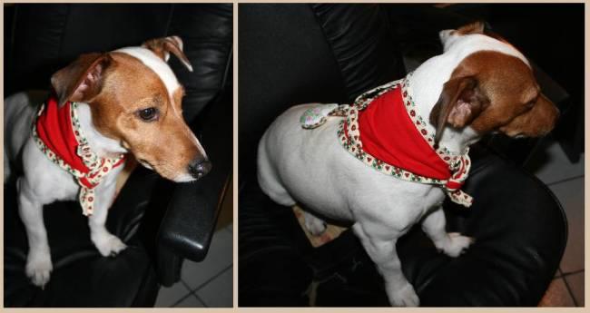 foulards de Noël