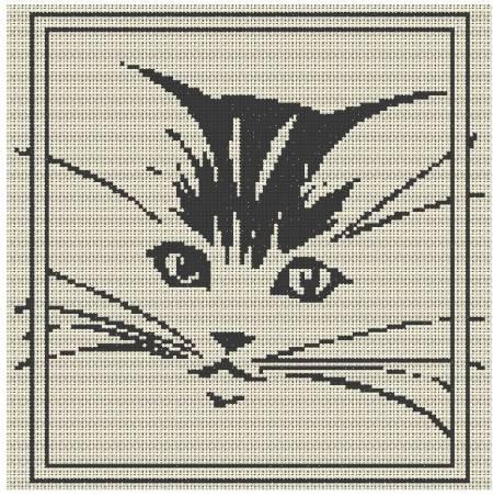 grilles jack russel et chats