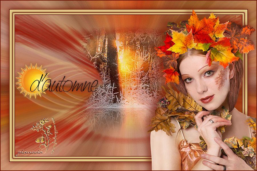 Soleil d'automne