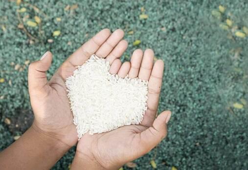grains de riz formant un coeur entre les mains d'une personne