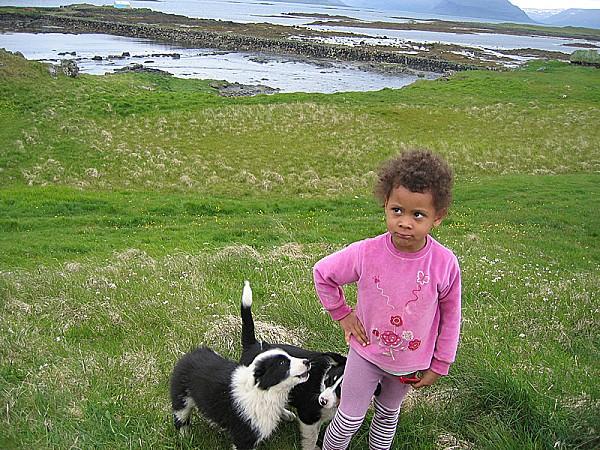 Skaleyjar-barn-hundur