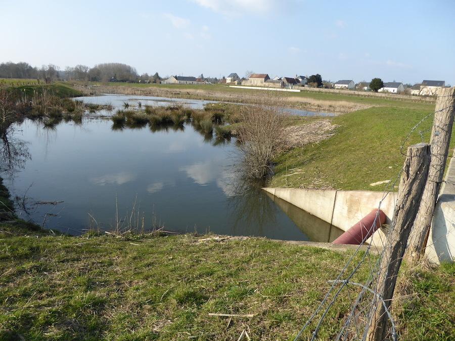 Pour vous occuper pendant ma pause: Balade dans les bas de St Cyr sur Loire.