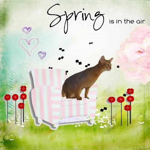 Balrog, Callis ....... et le printemps !!!