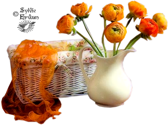 Tubes fleurs création 12