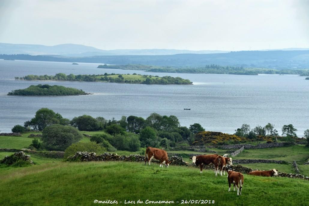 Lacs du Connemara - Irlande