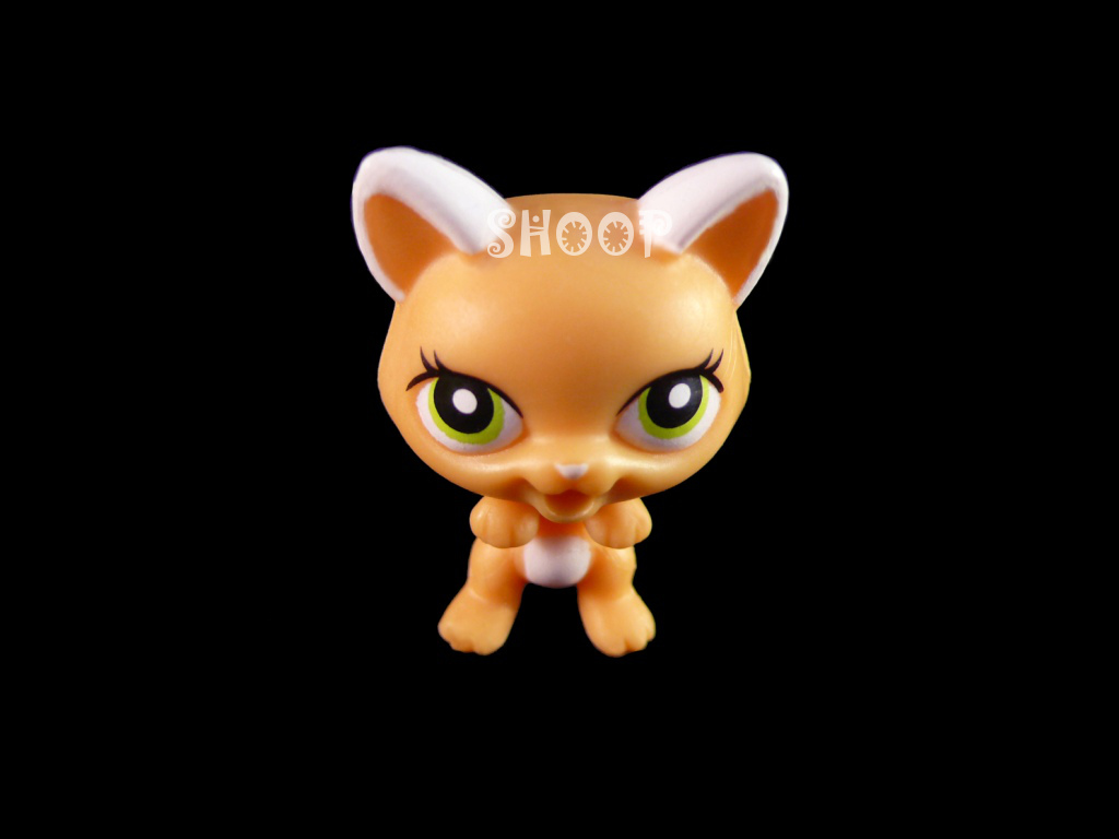 LPS 2492
