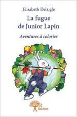 """La fugue de Junior Lapin D'Elisabeth Delaigle"