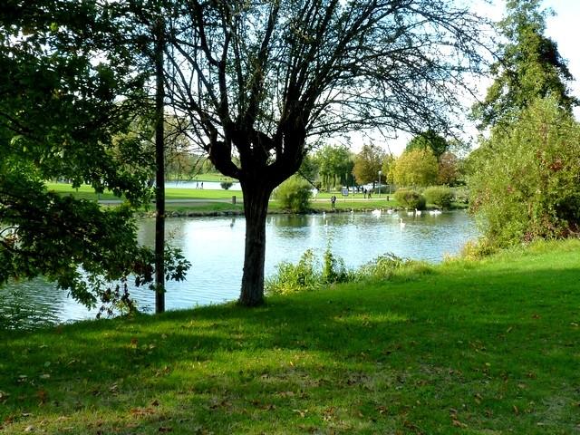 Plan d'eau de Metz 8 Marc de Metz 07 11 2012