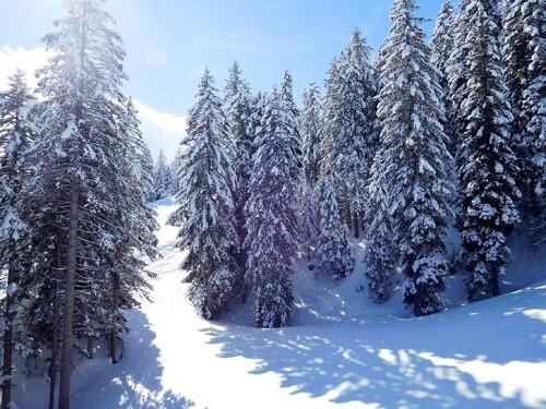 22/03/2018 Ski à La Paganella Tn Trentino Italie