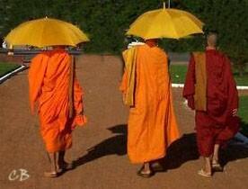 Cambodge moines bouddhistes