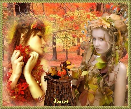 l'automne et ses jolies couleurs