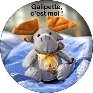 0192_Galipette.jpg