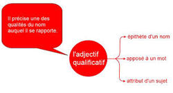 3 fonctions de l'adjectif qualificatif