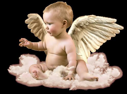 Anges Série 11