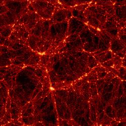 Neurones en bonne compagnie