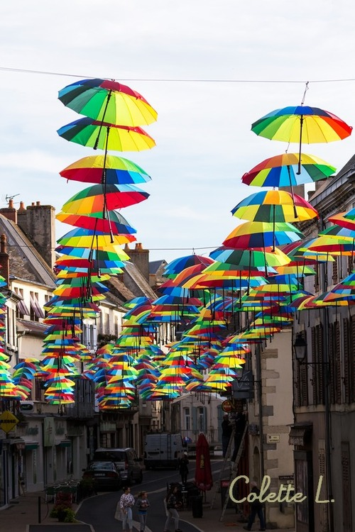 Parapluies en fête