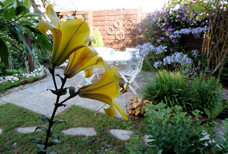 Regards sur le jardin cet été...