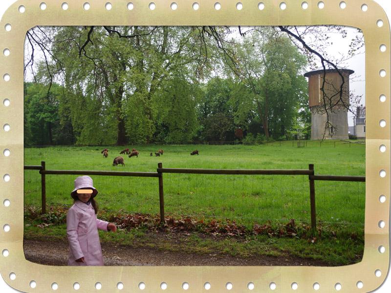 72800 Le Lude Château du Lude