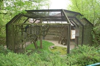 Zoo Osnabruck d50 2012 168
