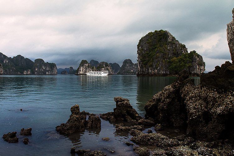 La Baie d'Ha Long et ses jonques