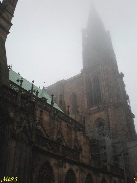 Alsace ,Bas-Rhin ,Strasbourg-67000