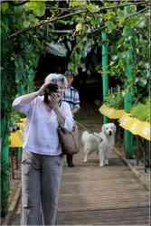 Dordogne Jardins de Limeuil