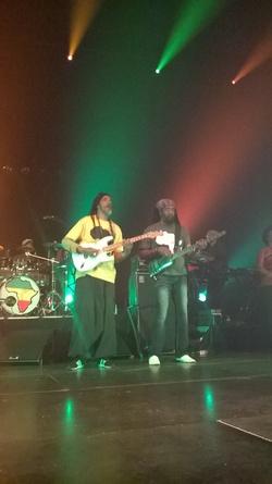 Concert de Tiken Jah Fakoly