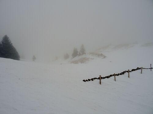 """""""Journée Neige"""" - Groupe 2"""