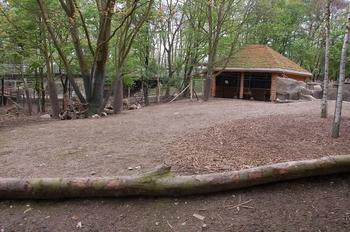 Zoo Osnabruck d50 2012 101