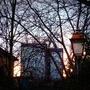 Bagnolet (93) - Les tours jumelles Mercuriales vues à travers un bouquet de branches