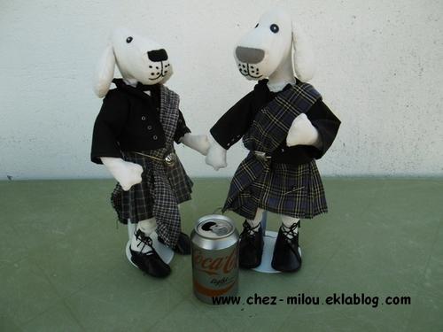 Les chiens écossais sont terminés